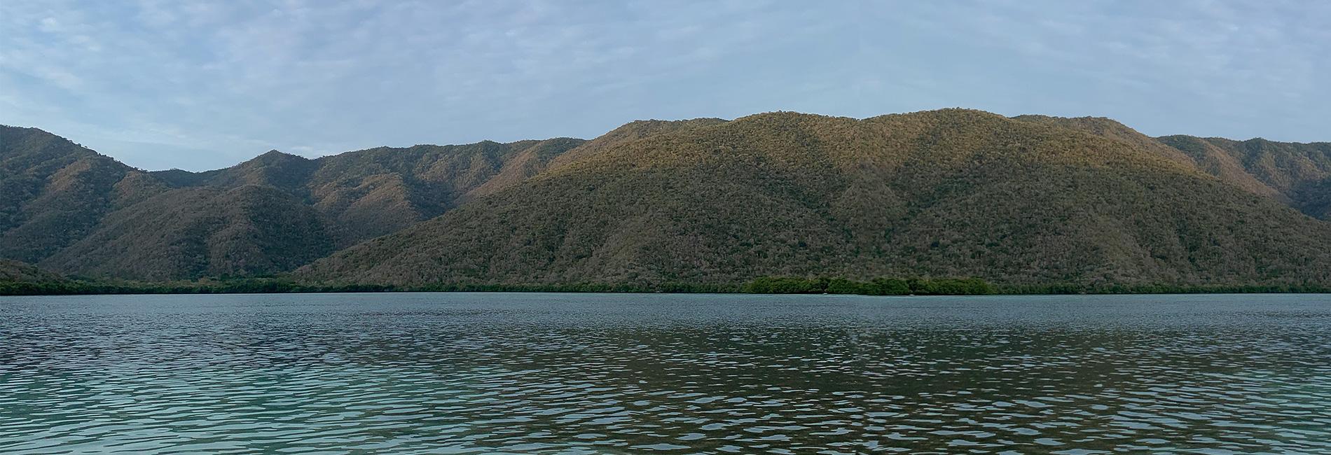 La ciénaga y el mar mysterious, wild and free